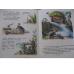 Сказки и картинки