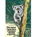 Про коалу Ушастика, утконоса Тихоню и других