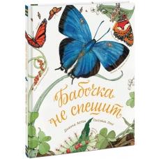 Бабочка не спешит